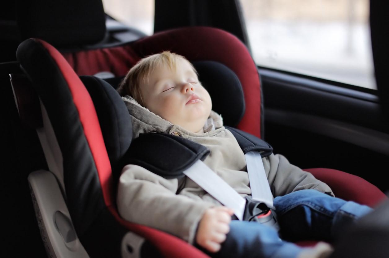 sillita seguridad asiento trasero