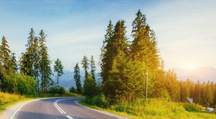 servicios-carretera velocidad-maxima-carretera
